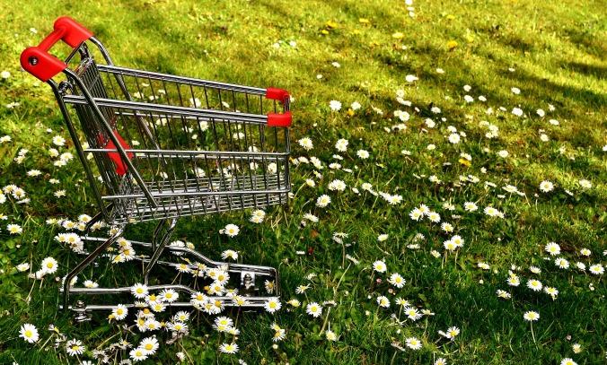 shopping-2291966_1920