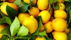 fruit-3287620_1920